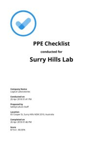 ppe checklist report