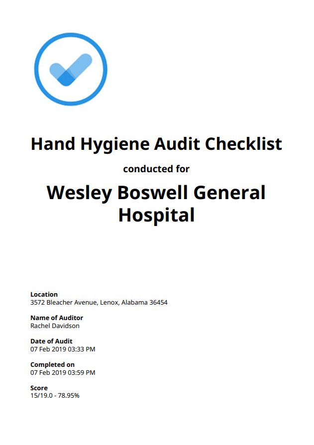 Hand Hygiene Audit Checklist