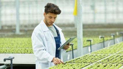Farmer inspecting crops for FSMA compliance
