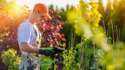 landscaping maintenance checklist worker featured